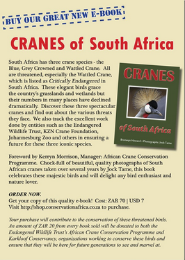 Cranes of South Africa