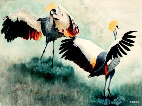 Crowned Cranes - Dancing