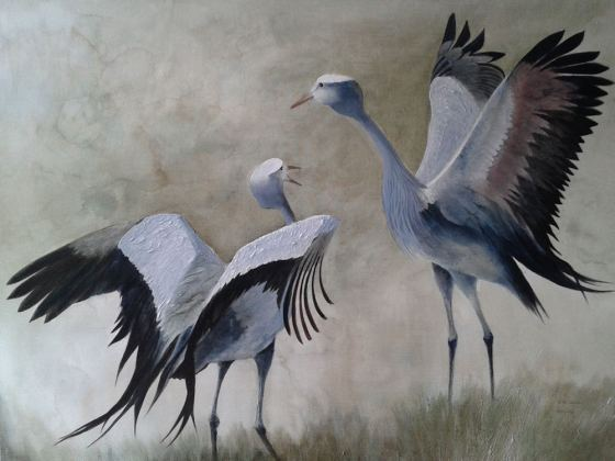 Blue Cranes - dancing