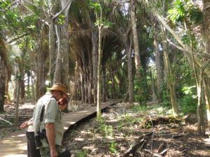 Cheryl and John in Raffia Palm Forest Monument