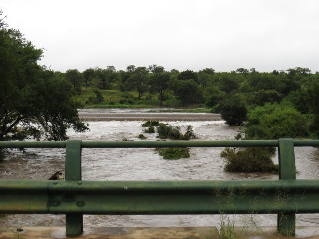 Dam at Crocodile Bridge - overflowing wildly.