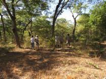 Local Habitat