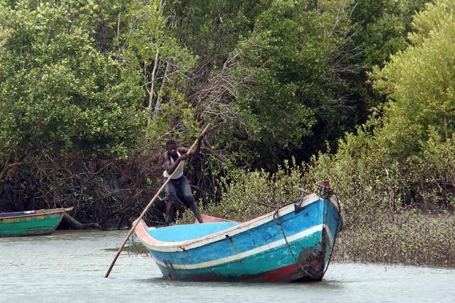 Local Fisherman - Rio Savane