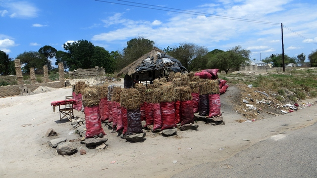 Selling coal seen all over Moz outside the little villiages