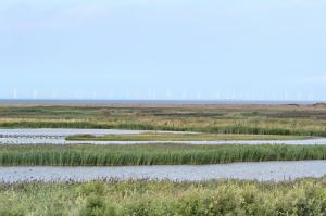 Cley with Wind turbines