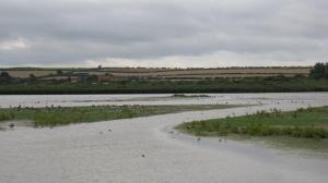 Titchwell Marshes