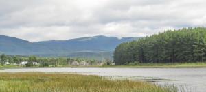 Extensive Wetland area