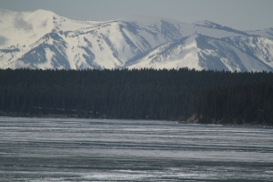 Yellowstone Lake - covered in ice