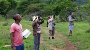 Birders enjoying the sights