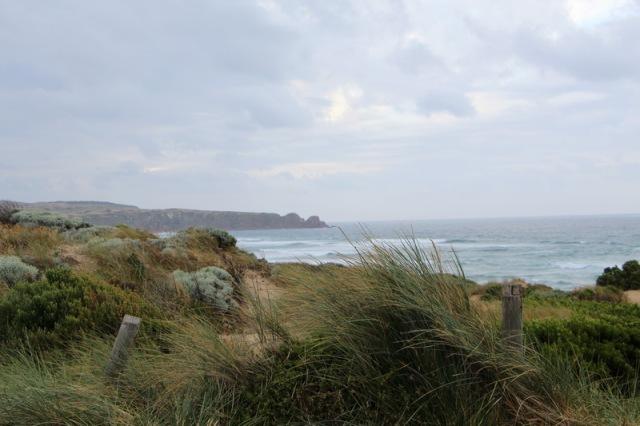 Nobbies coast line