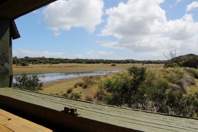 Swan Lake hide view
