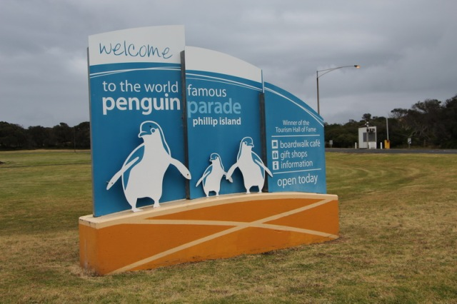 Welcome to Penguin Parade